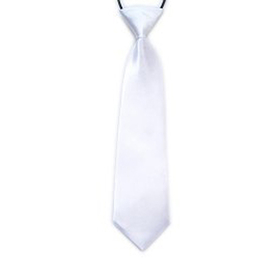 "(Price/ 10 Pcs) TopTie Kid's Solid Color Necktie 10"" Youth Neck Tie, White"